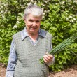 Elderly woman with spring onions — Stock Photo #28227435