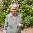 Elderly woman with spring onions — Stock Photo #28227653