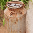 Old metallic ferruginous flask — Stockfoto #29930283