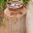 Foto Stock: Old metallic ferruginous flask