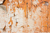 Old wooden surface with a chappy paint — Stock Photo