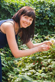 A young woman eats berries raspberry in a garden — Stock Photo