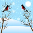 Winter landscape with birds bullfinch — Stock Vector