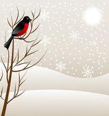 Winter landscape with a bird bullfinch — ストックベクタ