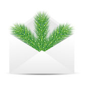 Open envelope with the branch of silver fir on a white backgroun — Stock Vector