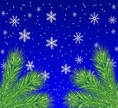 Festive christmas background with the branches of silver fir — Stok Vektör