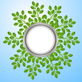 Background for a design with green branches — Stock Vector