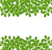 Zázemí pro design s zelenými větvemi — Stock vektor