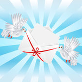 Two white a pigeon is carried envelope — Stock Vector