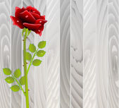 red rose on wooden texture — Vecteur