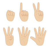Set hand, showing different number on white background — Stock Vector