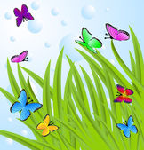 Background  with a green grass and butterflies — Vecteur