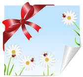 Greeting-card with the picture of flowers and red bow — Stock Vector