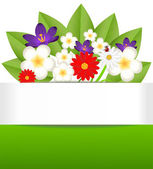Background for a design with beautiful flowers — Stock Vector