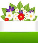 Achtergrond voor een ontwerp met mooie bloemen — Stockvector