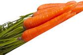 Carrots on diagonal — Stock Photo