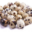 Stock fotografie: Quail eggs