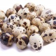 Foto de Stock  : Quail eggs