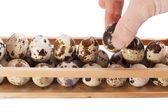 Držte vejce — Stock fotografie