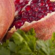 Pomegranat close-up — Stock Photo