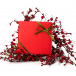 Festive gift box — Stock Photo