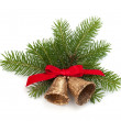 Christmas decoration with bells — Stock Photo #13299704