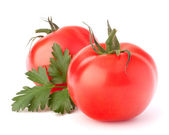 Two tomato vegetables and parsley leaves still life — Stock Photo