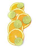 Citrus fruit slices — Stock Photo