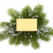 Christmas decoration with greeting card  — ストック写真