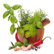 Stock Photo: Fresh flavoring herbs and spices in wooden mortar