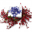 Festive gift box — Stock Photo #13849049