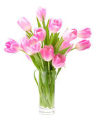 Pink tulips bouquet in vase isolated on white background — Stock Photo