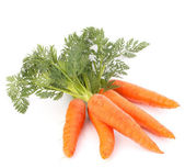 Carrot vegetable with leaves — Stock Photo