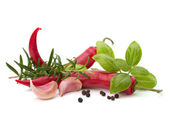 Chili pepper and flavoring herbs — Stock Photo