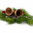 Christmas decoration with bells — Stock Photo