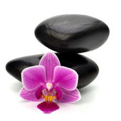 Zen pebbles balance. Spa and healthcare concept. — Stock Photo