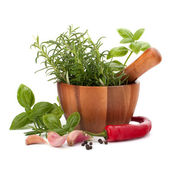 Fresh flavoring herbs and spices in wooden mortar — Stock Photo
