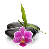 Spa and healthcare concept. Orchid and stones. — Stock Photo