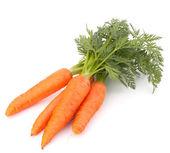 Karotten-gemüse mit blättern — Stockfoto