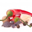 Stock Photo: Hot red chili or chilli pepper and aromatic herbs leaves still l