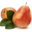 Pear fruits — Stock Photo
