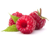 Ripe raspberries — Photo