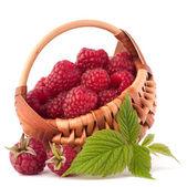 Ripe raspberries in basket — Stockfoto