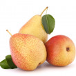 Ripe pear fruit — Stock Photo