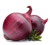 Red onion and rosemary leaves — Stock Photo