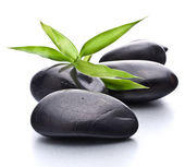 Zen pebbles. Stone spa and healthcare concept. — Stock Photo