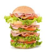 Junk food hamburger — Stock Photo