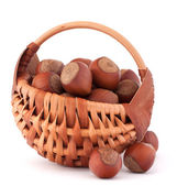 Hazelnuts in wicker basket — Stock fotografie