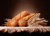 Assortment of breads and ears bunch still life — Stock Photo