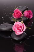 Spa stone and rose flowers still life. Healthcare concept. — Stock Photo